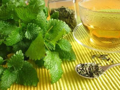 Meduňkový čaj je výborný při nespavosti