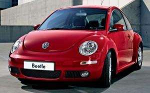 beetle auto brouk
