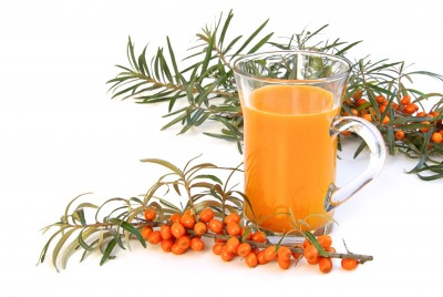 Kyselé plody rakytníku léčí i chutnají