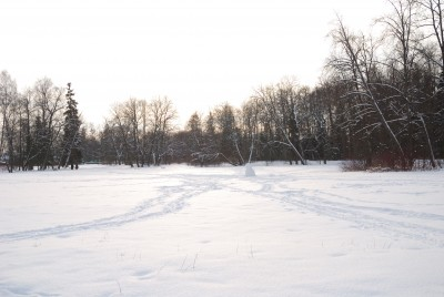 Na běžkách si skvěle užiješ zimní přírodu.
