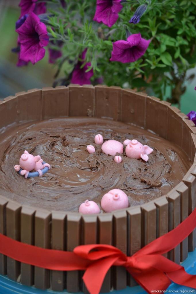 dort-prasatka-cokolada2